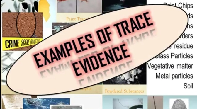 Examples of Trace Evidence