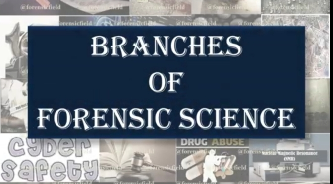 branches of forensic science