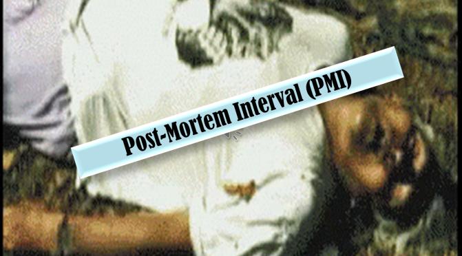 Post-Mortem Interval (PMI)